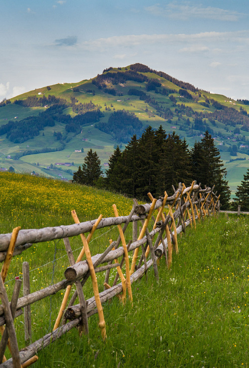 Mountain Fence, Switzerland